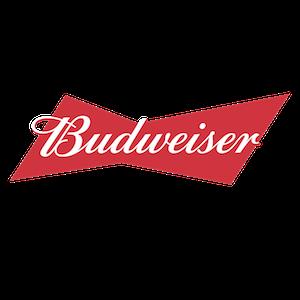 Budweiser Brand Strategy