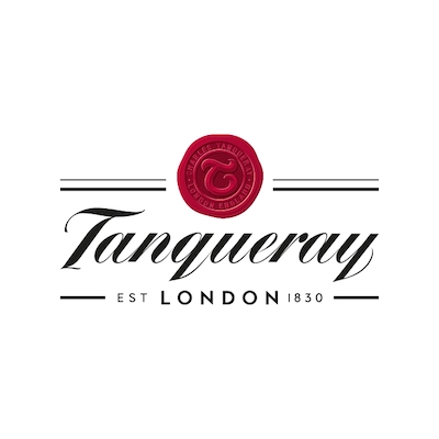 Tanqueray Brand Strategy Analysis