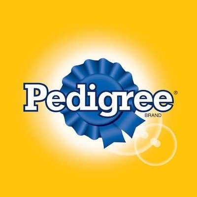 Pedigree Brand Strategy Analysis