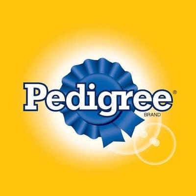 Pedigree Brand Strategy
